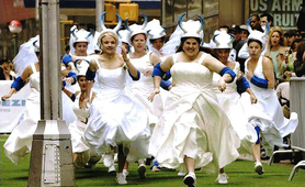 Amateur girls wedding dress mad cow race