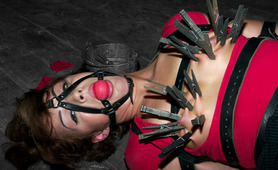 Extreme BDSM sessions