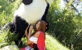 Little Red Riding Hood loves panda
