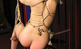 Hogtied whore in a cage accepts the fetish pain