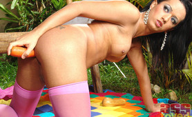 Horny shemales solo play date
