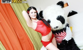 Sexy brunette girl in red seduces big Panda