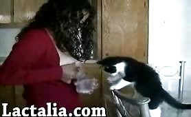 Crazy videos of a cat drinking breastmilk