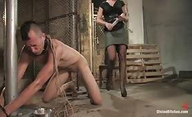 Training of a Hellhound