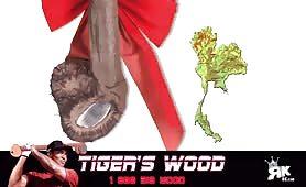 Tiger Wood's Publicity